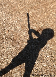 Shaddow swing